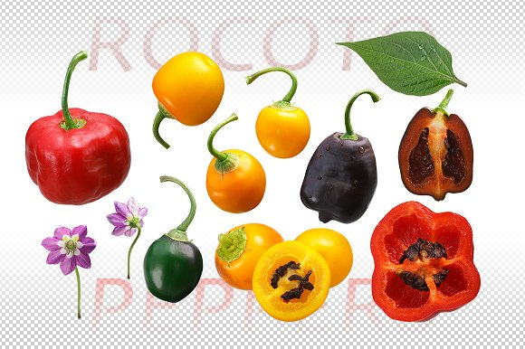 Rocoto Peppers