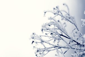 winter with ice