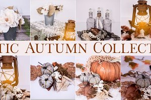 Rustic Autumn Collection
