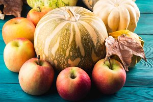 Autumn harvest concept with pumpkin apples