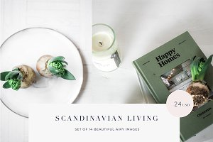 Scandinavian living styled photos
