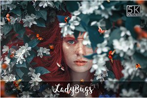 5K Ladybugs Overlays