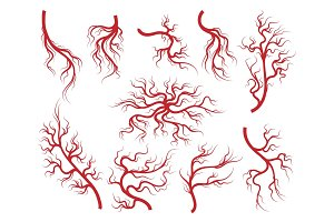 Veins and capillary icons set