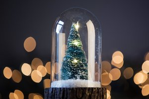 Christmas tree in a snowglobe