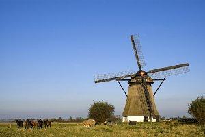 Oude Doornse mill