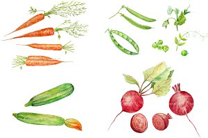 Watercolor Vegetable Collection 1