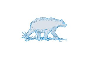 Polar Bear Walking Side Drawing