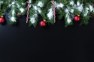 Xmas Evergreen on Black