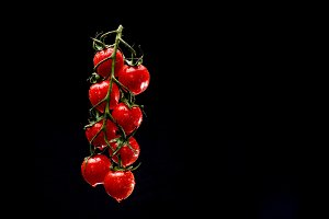 Cherry tomatoes hanging in the air