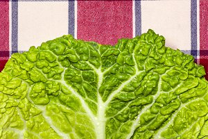 Detail of a cabbage leaf (2)
