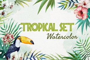 Tropical watercolor set+PNG!