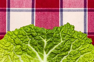 Detail of a cabbage leaf (1)