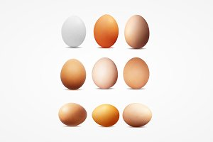 Realistic vector image of eggs