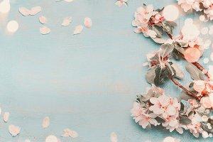 Spring blossom on light blue