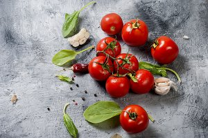 Branch tomatoes and herbs on grey ba