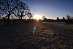 Sunrise over the meadow