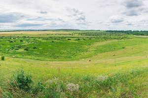 Panorama of the meadow