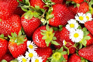 Strawberries with daisy flowers