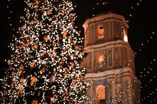 Christmas tree on the main square