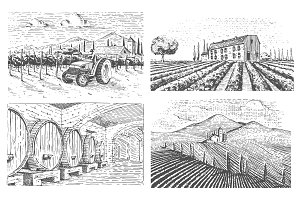 vineyards landscape, tuscany fields, old looking scratchboard or tattoo style for menus and signage in the bar. engraved hand drawn in old sketch, vintage style for label or T-shirt.