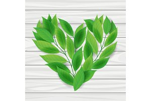 Heart from green leaves