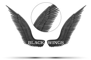 Black open angel wings
