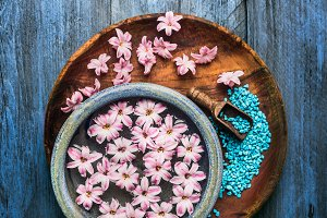 Water bowls with pink flowers