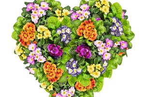 Heart shaped garden flowers