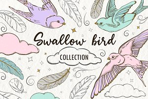 Swallow bird - Patterns and elements