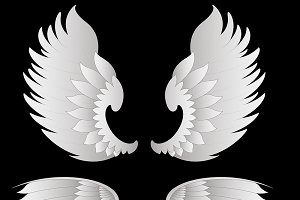 Wings Vector Designs