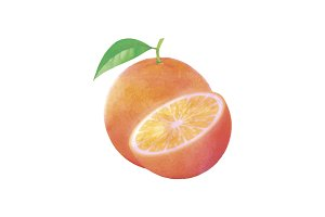 Watercolor Orange fruit with leaf on white