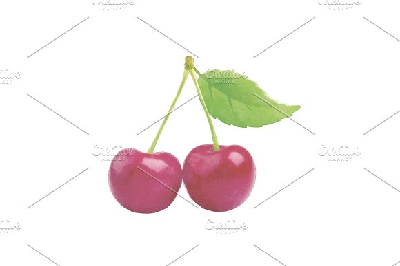 Watercolor Cherry Fruit With Leaf On White