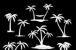 Coconut tree silhouettes