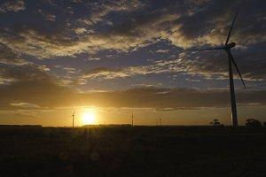 Sunset on a Windmill Field