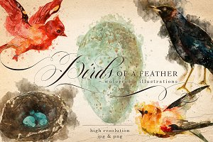 Birds of a Feather Watercolors