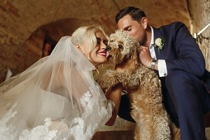 Bride and groom play with puppy
