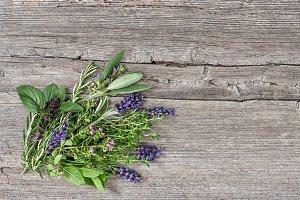 Bundle of fresh herbs