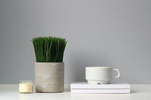 STYLED DESKTOP - PLANT + MUG #22