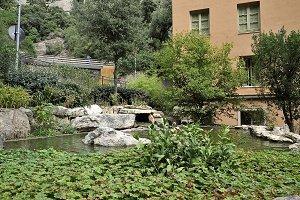 garden with lake