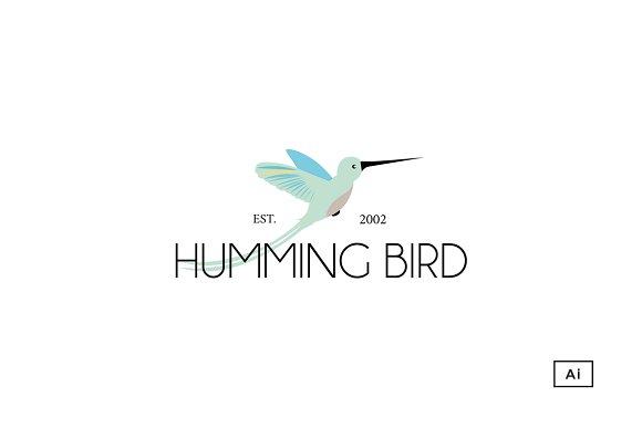 humming bird logo template logo templates creative market
