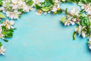 White Spring blossom on turquoise