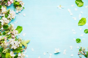 Spring blossom on blue turquoise