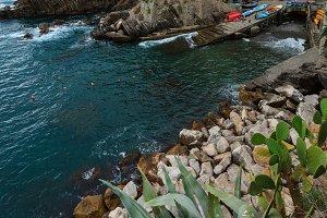 Manarola, coast, Cinque Terre, Italy