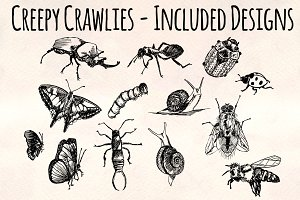 Creepy Crawly Vector Bug Bundle