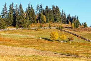 Autumn Carpathians (Ukraine).
