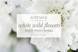 Wild Flower Stock Photo Bundle