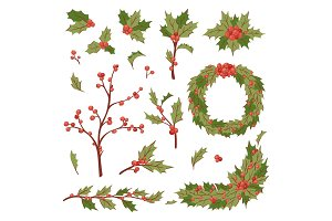 Christmas holly berry decoration vector leaves tree set, Xmas traditional Holly Berry symbol leaf icon branch illustration