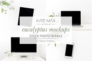 Eucalyptus Mockup Stock Photo Bundle