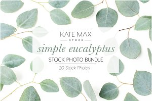 Simple Eucalyptus Stock Photo Bundle