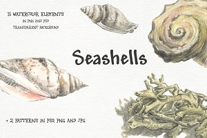 Seashells - watercolor elements set
